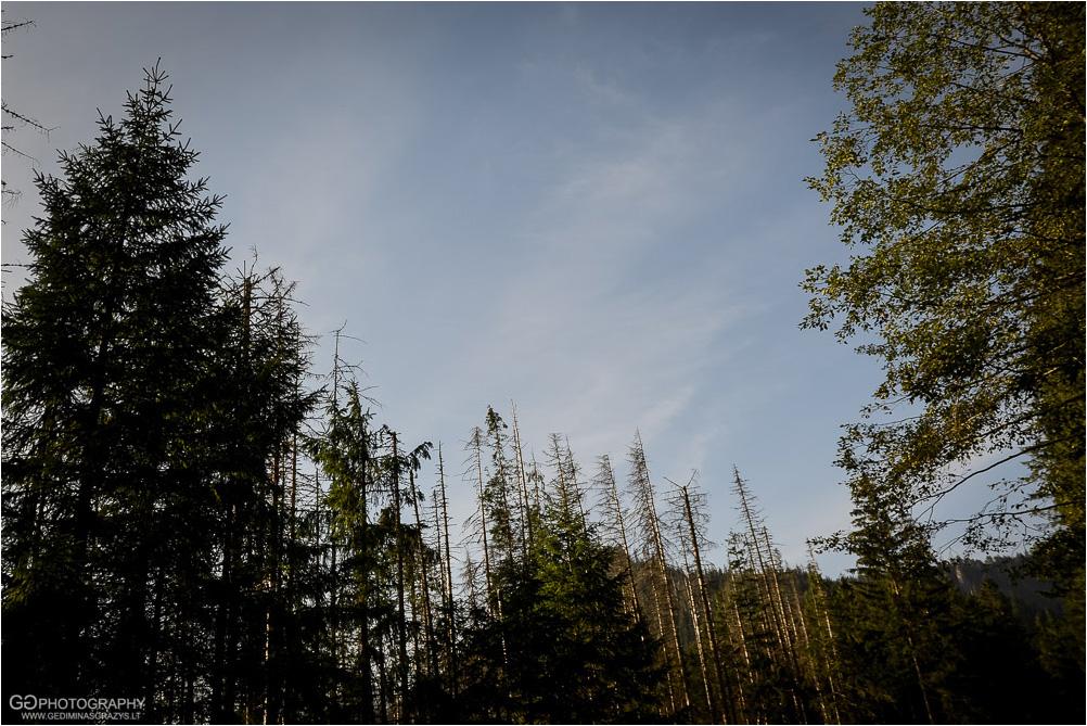 Gamtos-fotografija-Zakopane-kalnai-1