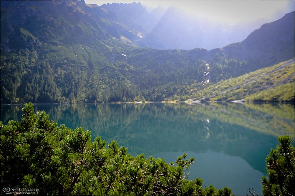 Gamtos-fotografija-Zakopane-kalnai-14