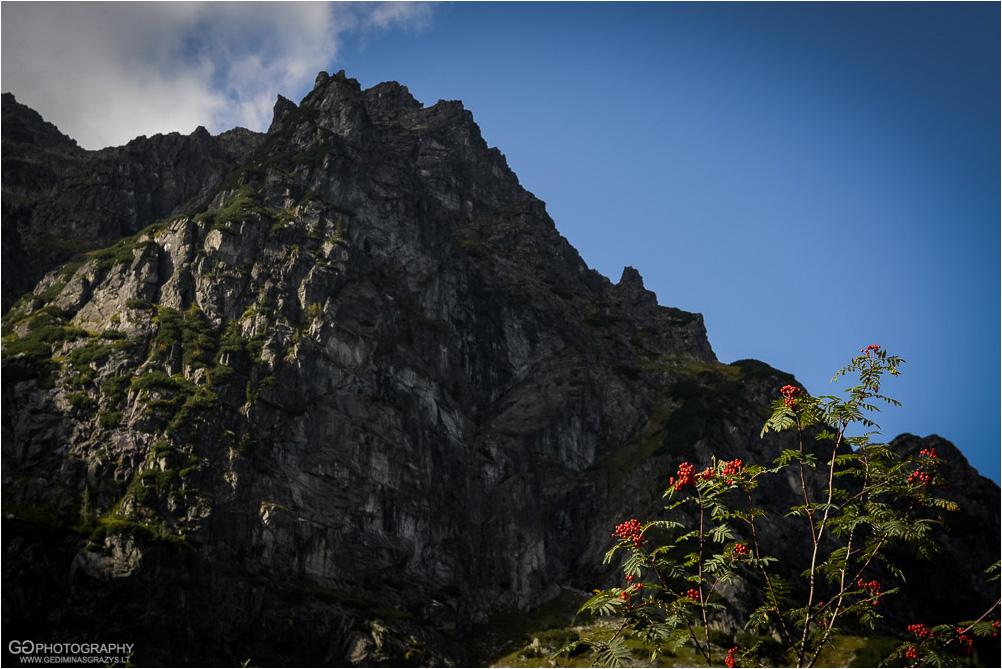 Gamtos-fotografija-Zakopane-kalnai-17
