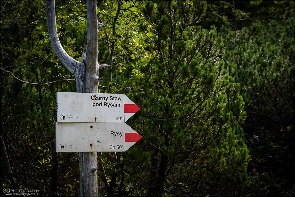 Gamtos-fotografija-Zakopane-kalnai-18