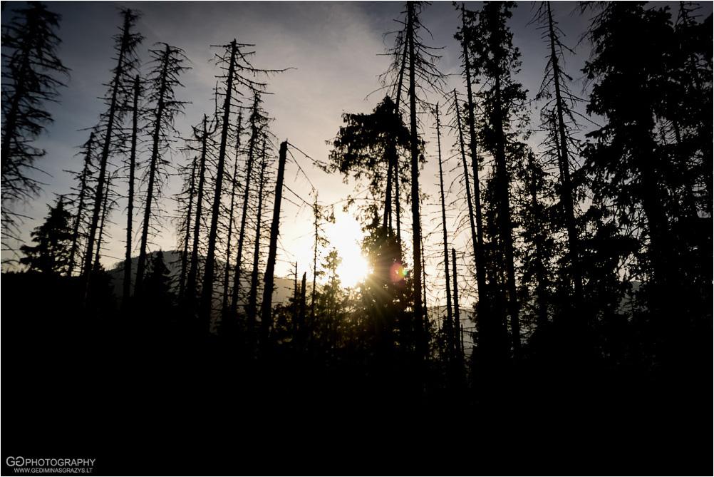 Gamtos-fotografija-Zakopane-kalnai-2