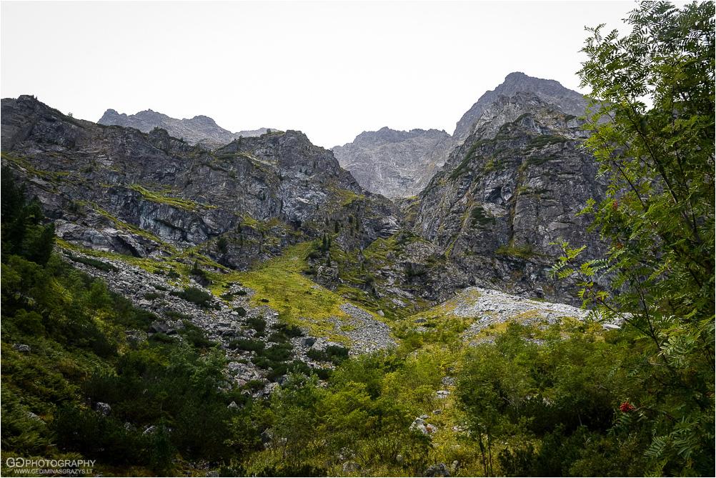Gamtos-fotografija-Zakopane-kalnai-20