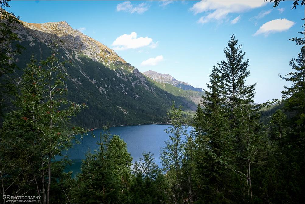 Gamtos-fotografija-Zakopane-kalnai-21