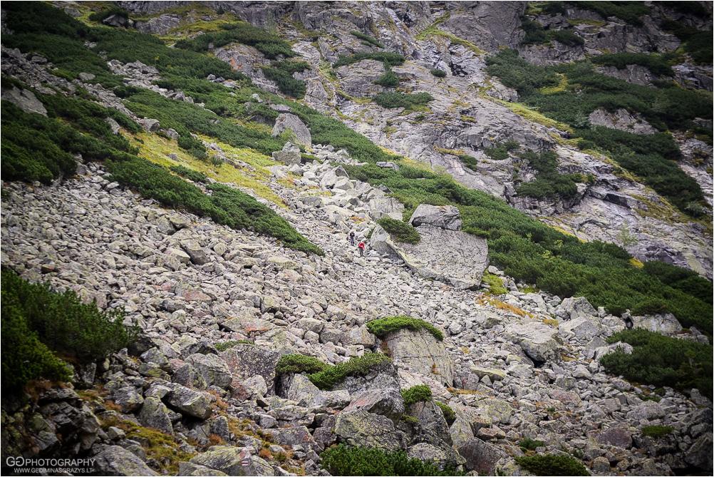 Gamtos-fotografija-Zakopane-kalnai-29