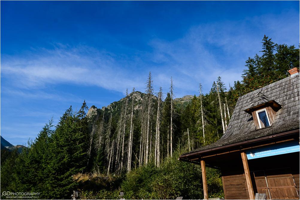 Gamtos-fotografija-Zakopane-kalnai-3