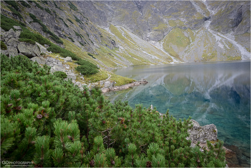 Gamtos-fotografija-Zakopane-kalnai-30