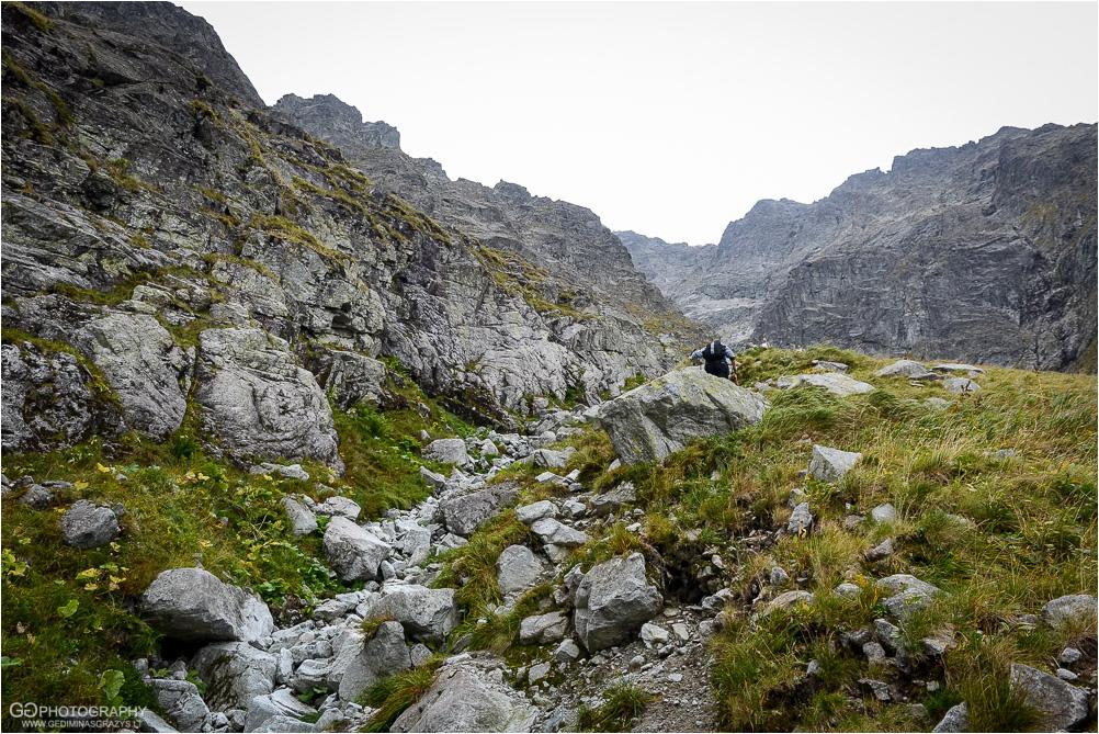 Gamtos-fotografija-Zakopane-kalnai-38