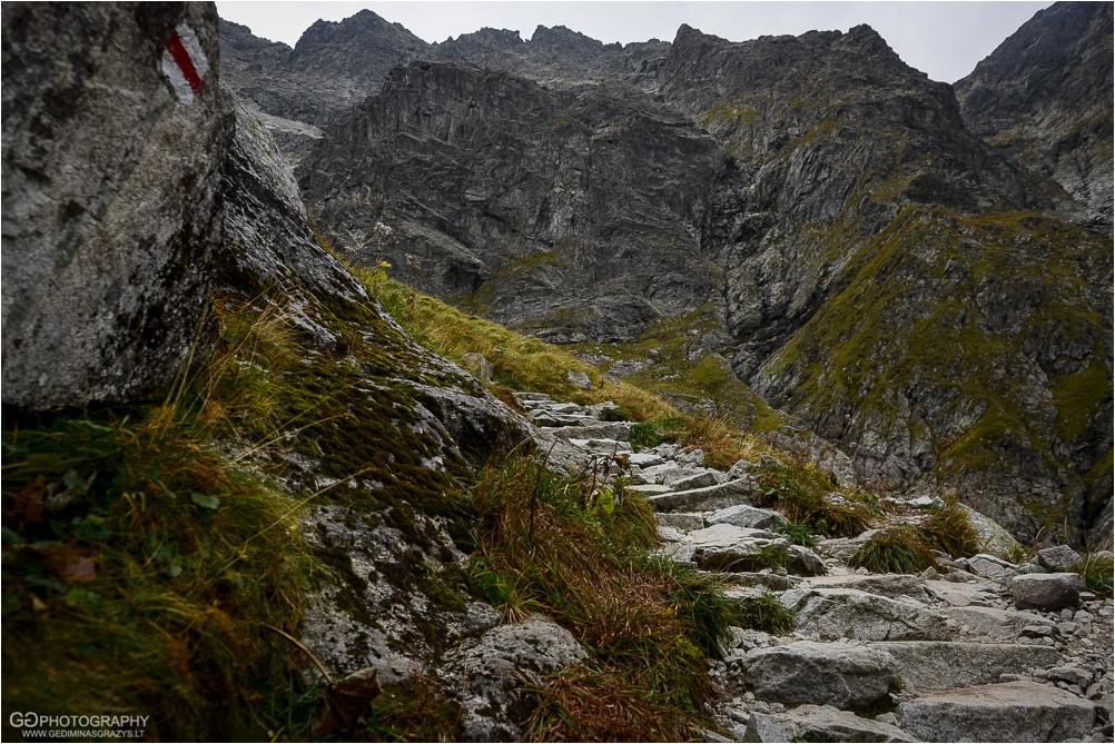 Gamtos-fotografija-Zakopane-kalnai-40