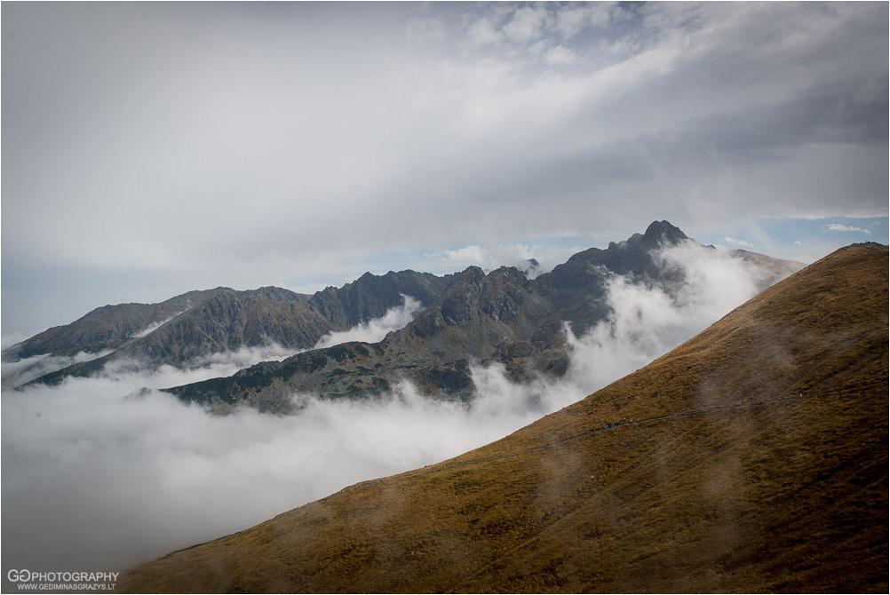Gamtos-fotografija-Zakopane-kalnai-46