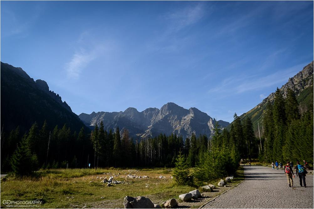 Gamtos-fotografija-Zakopane-kalnai-5