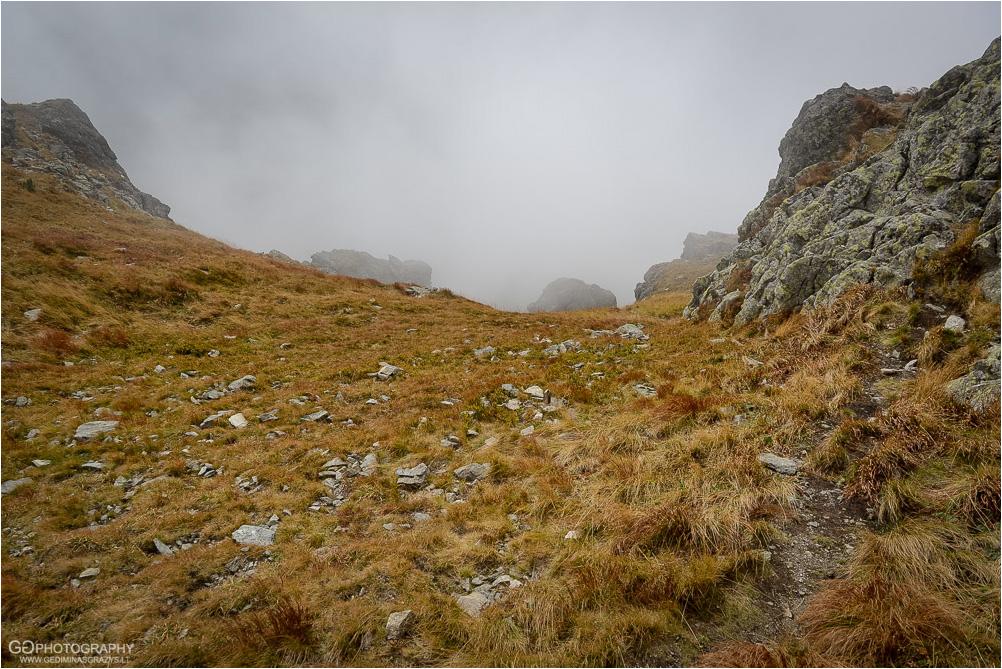 Gamtos-fotografija-Zakopane-kalnai-58