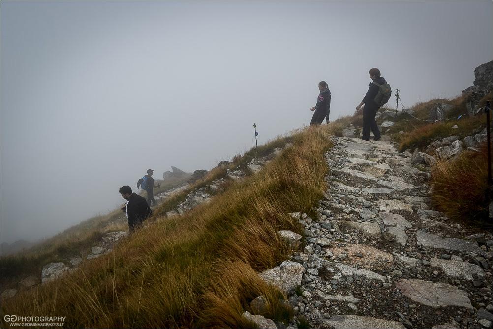Gamtos-fotografija-Zakopane-kalnai-65