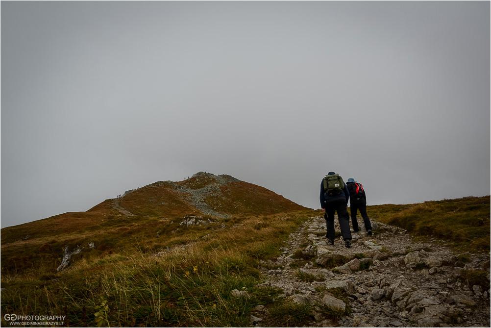 Gamtos-fotografija-Zakopane-kalnai-67