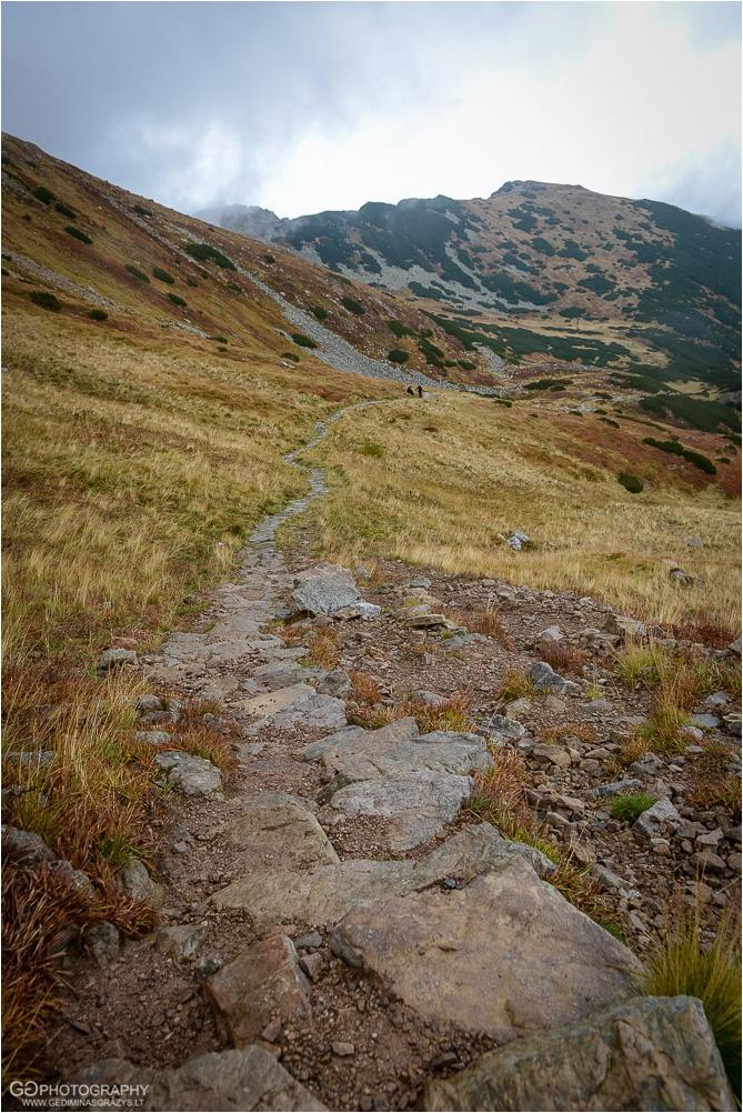 Gamtos-fotografija-Zakopane-kalnai-74