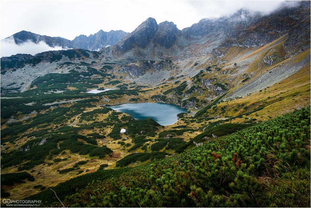 Gamtos-fotografija-Zakopane-kalnai-76