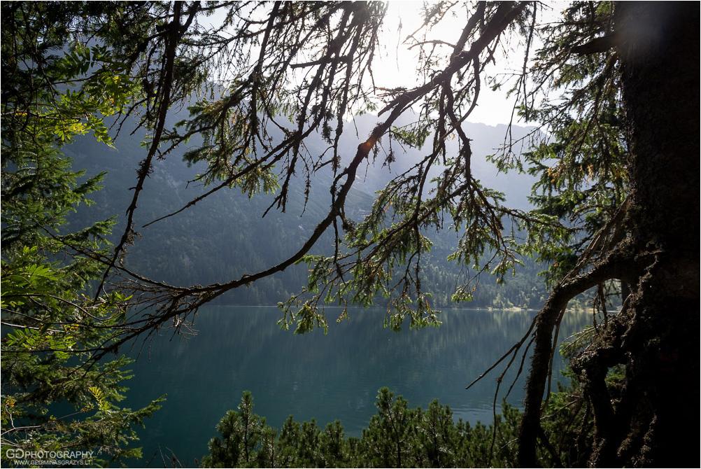 Gamtos-fotografija-Zakopane-kalnai-8