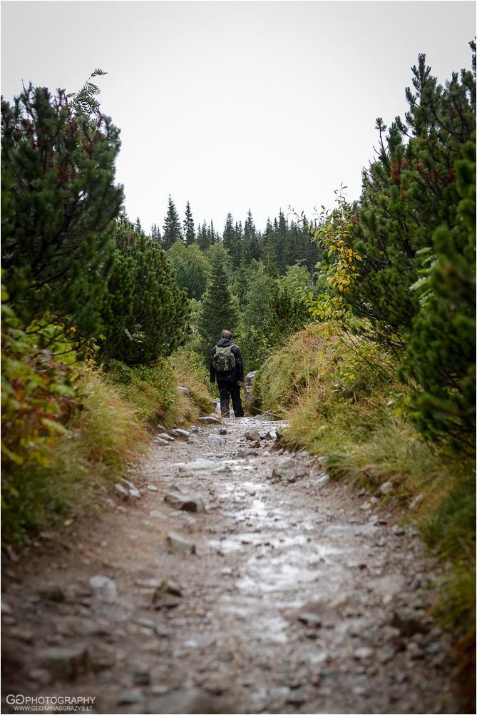Gamtos-fotografija-Zakopane-kalnai-85