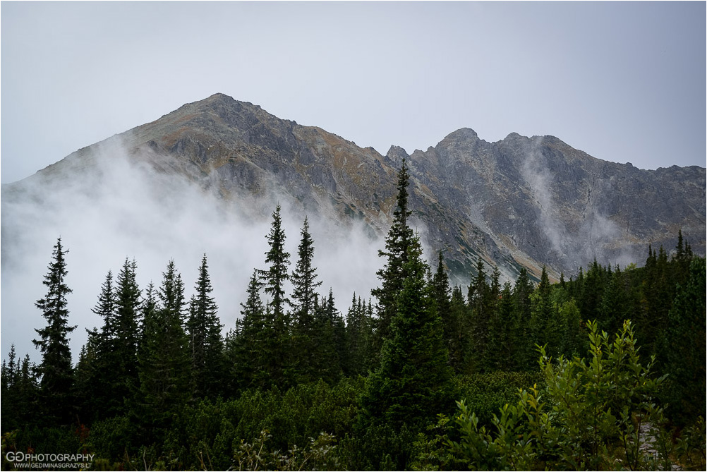 Gamtos-fotografija-Zakopane-kalnai-86